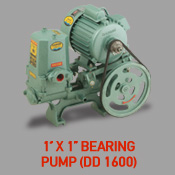 1'' x 1'' Bearing Pump (DD 1600)