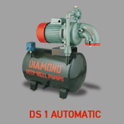DS 1 Automatic